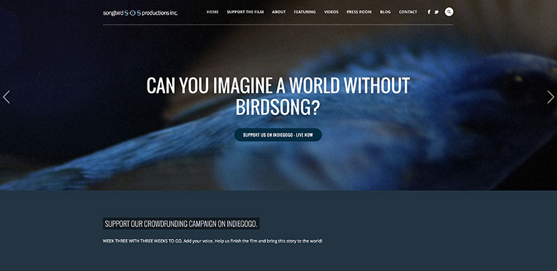 SOS-Homepage-800